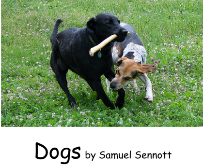 dogs title page